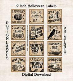witch themed halloween party ideas - Поиск в Google