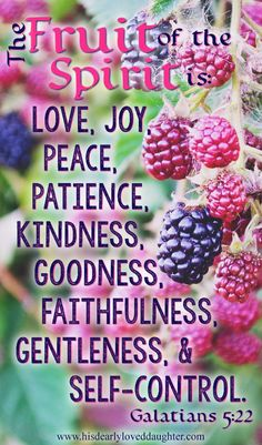"""The fruit of the Spirit is: love, joy, peace, patience, kindness, goodness, faithfulness, gentleness, and self-control."" Galatians 5:22  #verses #Bibleverse #WordofGod #truth #Christianquotes  How to Know if Recovery is Real  - His Dearly Loved Daughter"