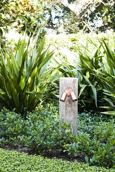 How To Incorporate Multiple Plants In A Great Landscape Design - House Garden Landscape Australian Garden Design, Australian Native Garden, Farmhouse Garden, Home Landscaping, Landscape Lighting, Garden Inspiration, Garden Ideas, Beautiful Gardens, Outdoor Gardens