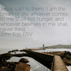 """Jesus said to them, """"I am the bread of life; whoever comes to me shall not hunger, and whoever believes in me shall never thirst.""""  John 6:35  #Bible #God #GodsSon #Jesus #JesusSaid #IAmTheBreadOfLife #Believe #NeverHunger #NeverThirst #GospelofJohn #SaintJohn #John6   http://bible.com/59/jhn.6.35.ESV"""