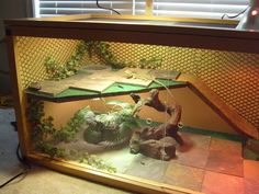 Diy Bearded Dragon Decor - I Like The Idea Of This Being A Basking Spot Though Knowing My 10 Inspiring Bearded Dragon Cage Setup And Decor Ideas Diy Bearded Dragon Terrarium Dec. Bearded Dragon Vivarium, Bearded Dragon Enclosure, Bearded Dragon Terrarium, Bearded Dragon Habitat, Bartagamen Terrarium, Reptile Terrarium, Bearded Dragon Funny, Bearded Dragon Diet, Bearded Dragon Cage Ideas