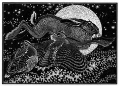 Colin See-Paynton ~ Nocturnal Encounters - Hare and Woodcocks ~ Wood Engraving, x 18 cm Hare Illustration, Illustrations, Linocut Prints, Art Prints, Rabbit Sculpture, Scratchboard, Rabbit Art, Wood Engraving, Wildlife Art