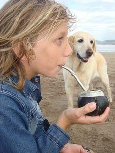 . Yerba Mate, Keep Calm And Drink, Tea, Vacations, Argentina, Teas