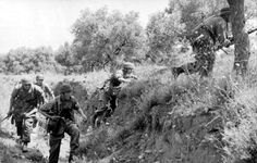 German paratroops on Crete | NZHistory, New Zealand history online
