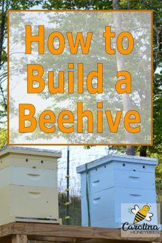 Interested in beekeeping? You can build a beehive of your own and produce honey! Beekeeping is a wonderful hobby - it does take some work and know how. Get off to the best start possible Building A Beehive, Honey Bee Hives, Honey Bees, Beekeeping For Beginners, How To Start Beekeeping, Raising Bees, Raising Ducks, Bee Boxes, Bee Farm