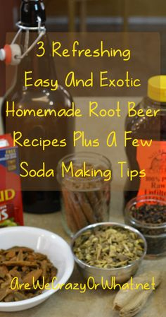 Easy recipes for homemade root beer using a variety of old and new ingredients. #beselfreliant