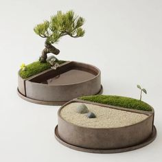 Japanese Garden Theme For A Getaway In Your Own Backyard Mini Zen Garden, Moss Garden, Garden Pots, Miniature Zen Garden, Concrete Crafts, Concrete Planters, Garden Terrarium, Bonsai Garden, Ikebana