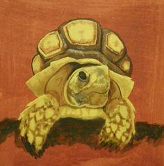 tortoise paint