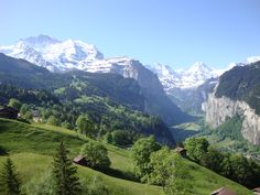 #view from #Wengen in summer