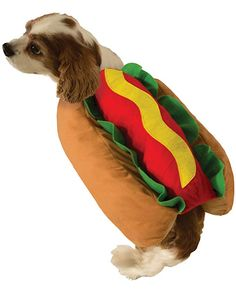 c04bfedb51 Cute Hot Dog Pet Costume Dog Cat Wiener Bun Halloween Food Small Medium *  Read more at the image link. (This is an affiliate link and I receive a  commission ...