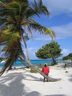 Amazing Saint Vincent  the Grenadines - http://www.travelandtransitions.com/destinations/destination-advice/latin-america-the-caribbean/