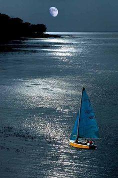 Moonlight Sailing - vma.