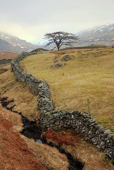 Wiggly Wall,/Kirkstone Pass Lake District England This so much looks like the stone fences that my great grandfather and family built in Ark during the A century Scots girl in my dreams climbed over these using wooden stiles along the way. Lake District, Oh The Places You'll Go, Places To Travel, Places To Visit, Travel Destinations, Cumbria, Reisen In Europa, England And Scotland, Skye Scotland
