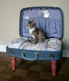 a-suitcase-for-decoration