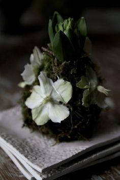 bulb, white christmas, plant inspir