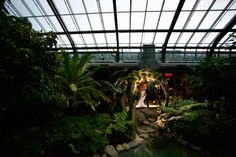 Theres a lot of cool shots we could do in the conservatory