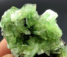 TOP~ Superb Lamellar Green PRUSKITE Crystal Cluster Mineral Specimen from China