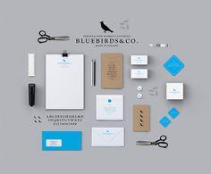 Bluebirds & Co. brand identity