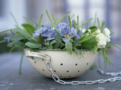 What a great idea this is! Create a hanging basket from an old colander. Very country cottage chic.