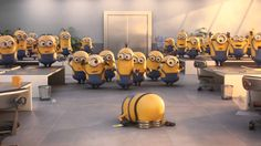 Minions Wishing Happy Birthday Minions Happy Birthday Song, Minions Singing, Funny Happy Birthday Messages, Happy Birthday Video, Singing Happy Birthday, Happy Birthday Wishes, Youtube Birthday, Happy Birthday Funny Humorous, Birthday Video Message