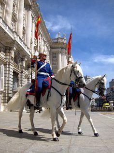 Royal Palace and Royal Guard. #Spain #whitehorses
