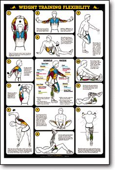 Trim Your Waist With These Awesome Fitness Tips! If you want to live well you need to stay in shape throughout your life or else you will not be well in later years. This will ensure you stay in shape aft Month Workout Challenge, Workout Schedule, Stretches For Flexibility, Flexibility Workout, Stretching Exercises, Up Fitness, Fitness Tips, Flexibility Training Program, Workout Posters