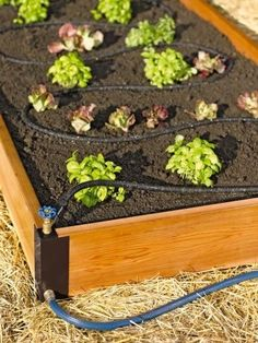 Aquacorner Raised Bed Corners with Soaker System - RaisedBeds.com  with hose 12'h  $81  + 5 ship