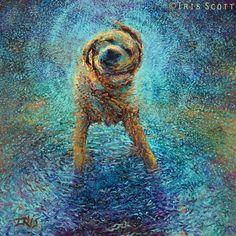 Een hond die zich uitschudt van Iris Scott. Helemaal met haar vingers gedaan.