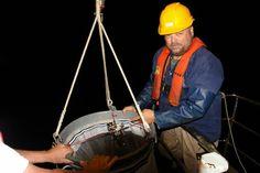 Paikallisten olojen parantaminen avain koko Itämeren pelastamiseen Bags, Handbags, Bag, Totes, Hand Bags
