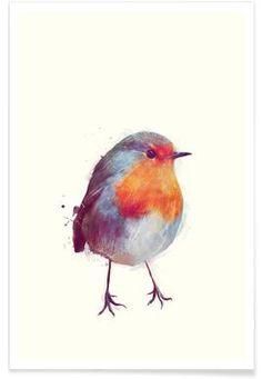 Winter Robin - Amy Hamilton - Premium poster