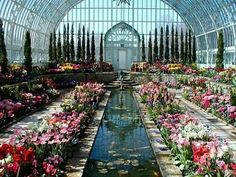 Marjorie McNeely Conservatory, St. Paul, MN