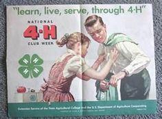 vintage 4-H - Bing Images