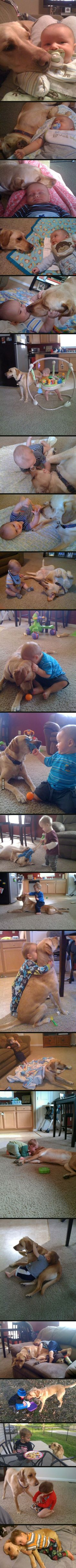 Omg this dog could be Opies twin. And Im pretty sure I have similar pics of Claira with Opie! So precious. Every kid needs a dog!