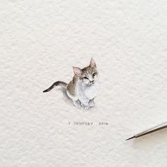 Day 1/120 (1/30 #tiny_creaturesdays series). Kitty 🐾 20 x 18 mm. I have so much to show you, guys. Hold on! #cat #kitten #pet #blvart #artfido #art #krasnoyarsk #fabercastell #tinyart #drawings #miniature #watercolor #global_artworks #arts_help #arts_gallery #waterblog #painting #artmaster #supportartists #art_worldly #sharingart #miniart #miniatures #miniatureart #tiny_worlds_living #artsfeatures #artscrowds