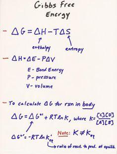 MCAT+study | MCAT Study Blog: BIO Lecture 1: Thermodynamics