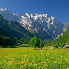 Guia de Viagem: Eslovênia.