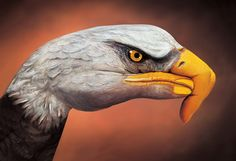 finger painting eagle