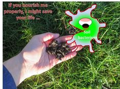 IChip: high-throughput technology to grow soil bacteria brings a new antibiotic - Click pin to read the full article at sciencenutshell.com