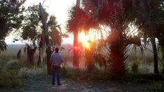 Sunset on Savage Island at Fort McAllister State Historic Park