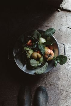 Moments of *everyday life* - Autumn fruits. Dark Food Photography, Life Photography, Fall Fruits, Food Hacks, Food Tips, Creative Food, Brunch, Raw Food Recipes, Apple Recipes