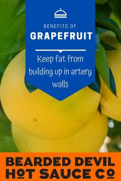 It could help keep fat from building up in artery walls. There's evidence—at least in mice—showing that naringin (a flavonoid in grapefruit) can help prevent atherosclerosis, when plaque and cholesterol build up in your arteries. Spicy Sauce, Hot Sauce, Health Benefits Of Grapefruit, Fruit Sauce, Immune System, Cholesterol, Mice, At Least, Walls