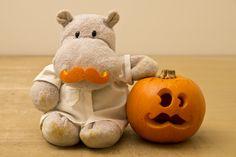 Tiny Hippo with Pumpkin