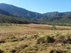 El Valle de Bao, uno de los valles intramontañosos mas altos e importantes de la Cordillera Central, R.D.