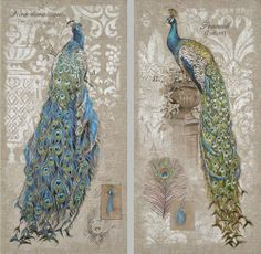 """Peacocks Wall Canvases - set of 2 by Accent Your Life. $82.49. Set of 2 canvases. 18"""" x 36"""". These colorful and artistically crafted wall canvases make a stunning addition to any wall they are hung upon!"""