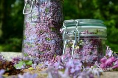 herbatka z kwiatka zamknięte słoiki(8)