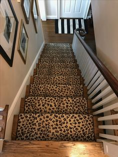 Carpet Runner Stairs Stair Runners Prints Animals House Animales