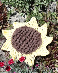 Knit Sunflower Dishcloth (free pattern) | Lily Sugar ~ I bet I can figure out a way to crochet this ... who me? overconfident? naaaaaahh ;P