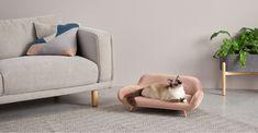 Moby Medium Pet Sofa, Velvet Vintage Pink and Copper Rose Vintage, Vintage Velvet, Country Living Uk, Pink Bedding, Velvet Sofa, Cat Furniture, Nice Furniture, Pink Velvet, Pet Beds