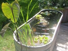 DIY backyard cattle trough fish pond - 22 Small Garden or Backyard Aquarium Ideas Will Blow Your Mind