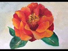 How to paint a red Camellia flower with watercolor, a fast and easy tutorial - YouTube